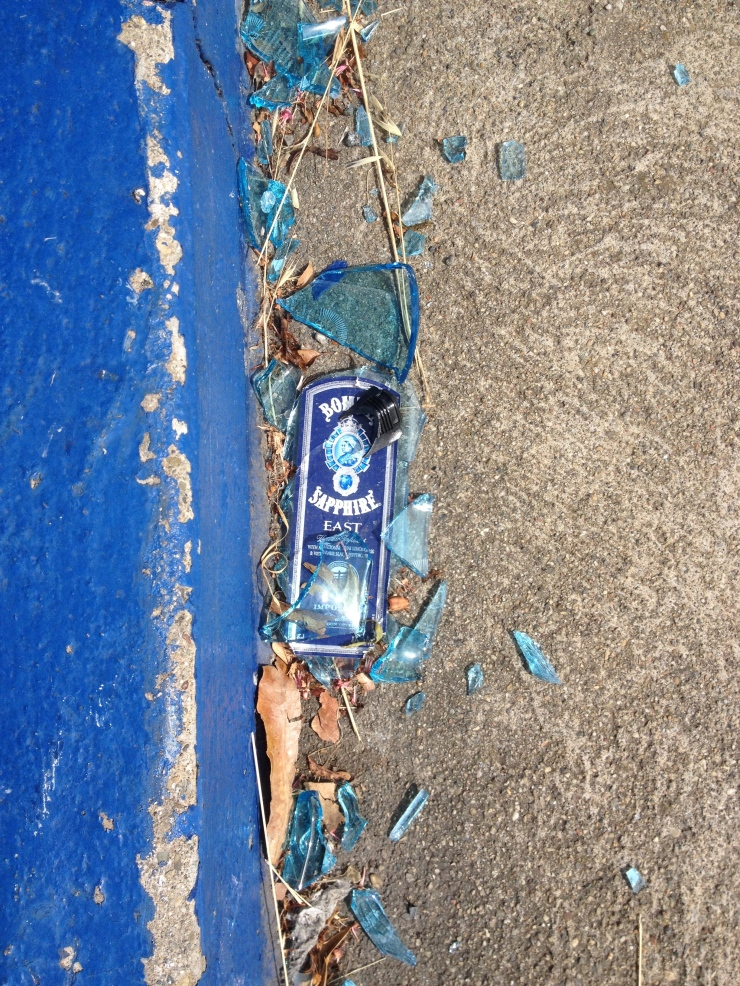 smashed Bombay Sapphire bottle in the street