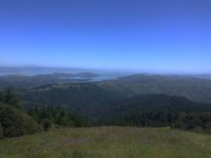 San Francisco from Mt. Tamalpais