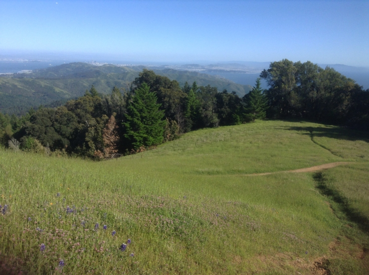 Green meadow, a trail, and a view all the way to San Francisco